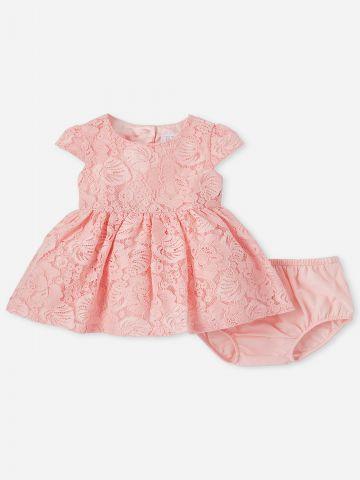 שמלת תחרה עם תחתונים נלווים / 0-18M של THE CHILDREN'S PLACE
