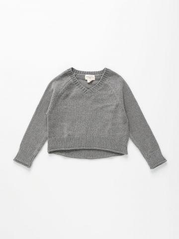 סוודר שניל קרופ / בנות של AMERICAN EAGLE