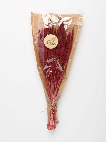 זר פרחים יבשים- וויילד גראס הולנדי בורדו של FLORALIS