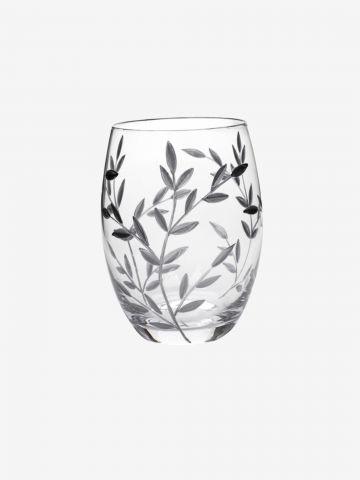 כוס זכוכית לברשות שיניים של FOX HOME