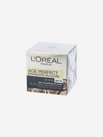 קרם יום Age Perfect Renaissance Spf15 של L'OREAL PARIS