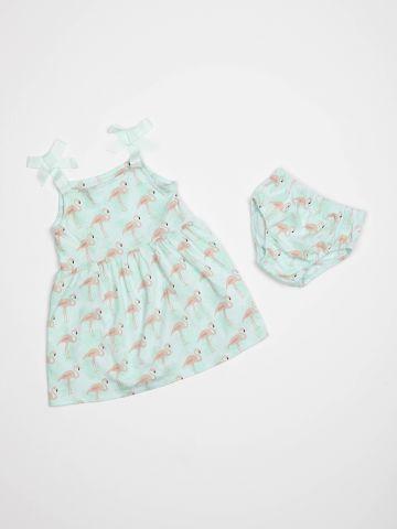 שמלה בהדפס פלמינגו / בייבי בנות