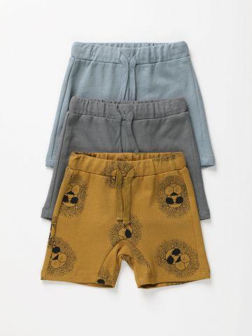 מארז 3 מכנסיים קצרים פרנץ' טרי בצבעים שונים / 6M-6Y