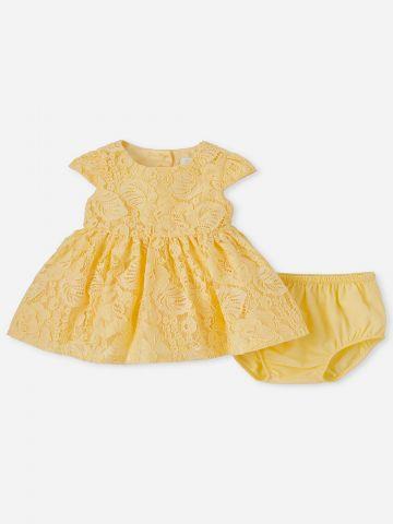 שמלת תחרה עם תחתונים נלווים / 0-18M