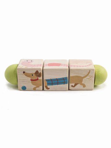 טוויסטר תמונות חיות / Tender Leaf Toys של TOYS